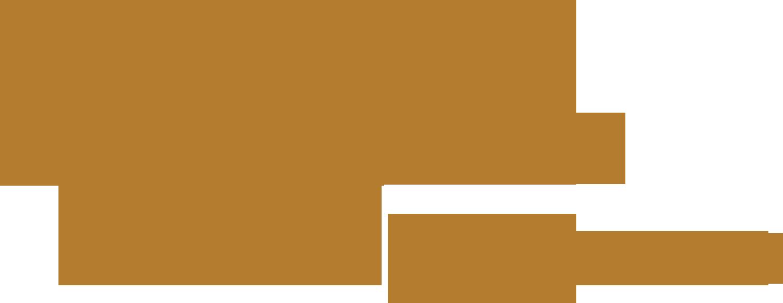 Digital Cultural eXperience